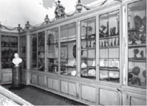 Sezione di Medicina del Museo per la Storia dell'Università, Università di Pavia